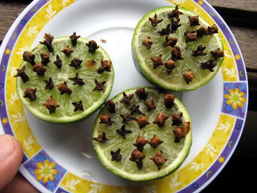 repelente-mosquito-limao-cravo